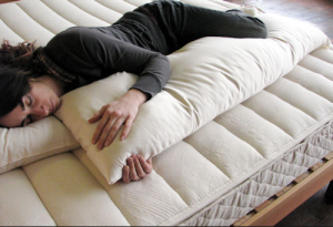 Organic Body Pillow and Other Pregnancy Must-Haves